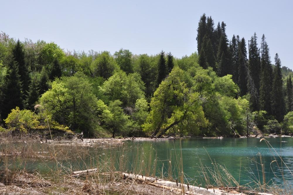 Bergsee Sary-Chelek
