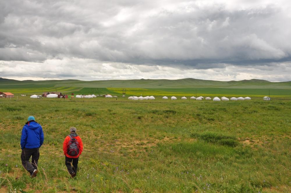 Jurtencamp auf Wiese