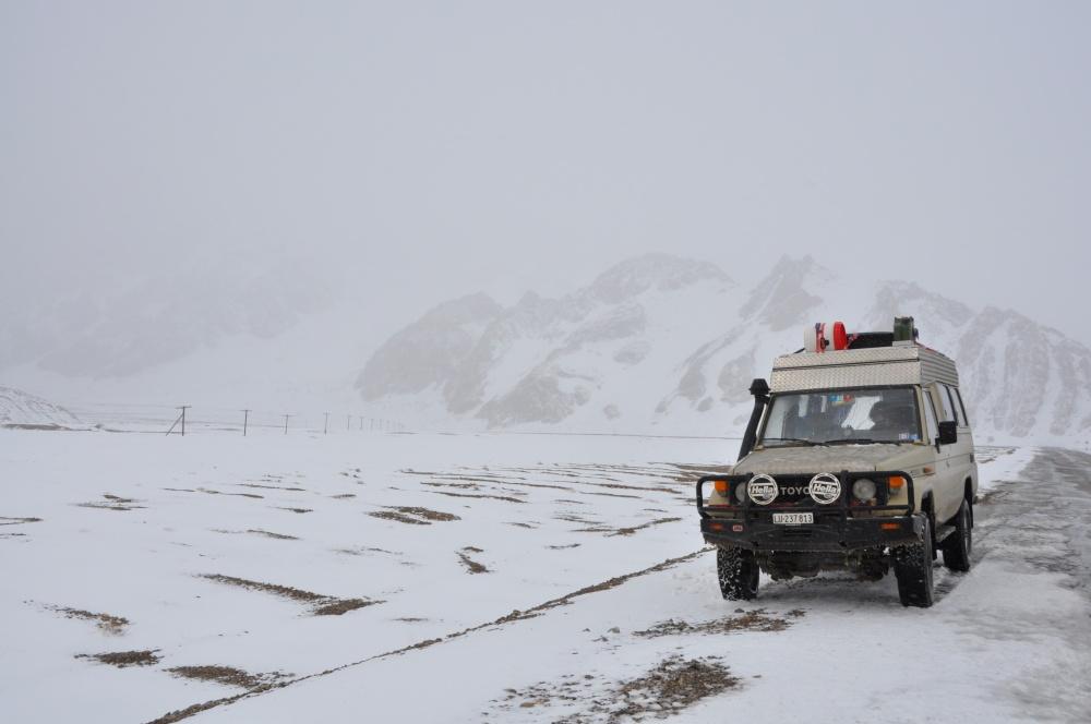 Manny im Schneesturm