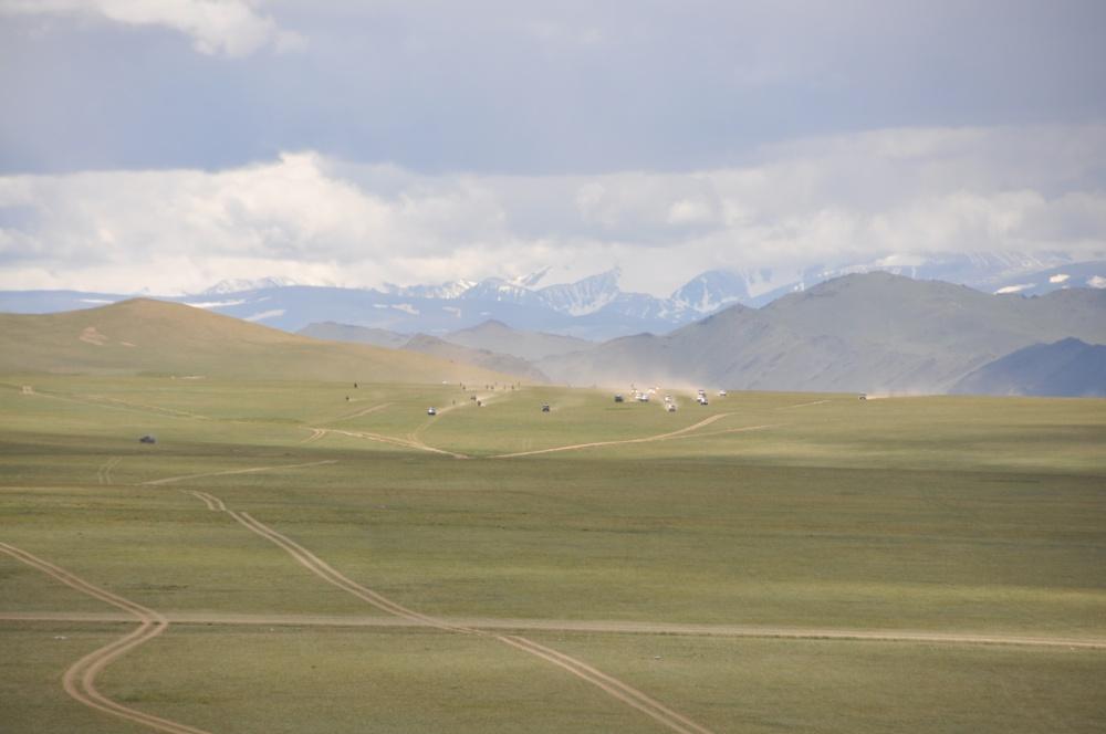 Pferderennen am Naadam