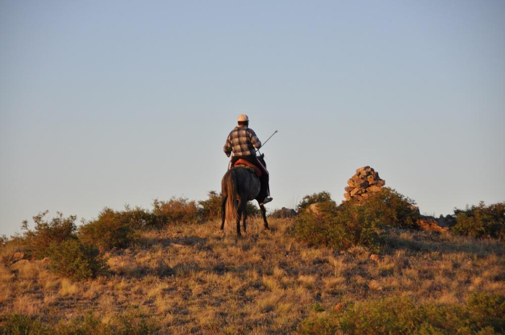 Reiter in Steppe bei Abendsonne