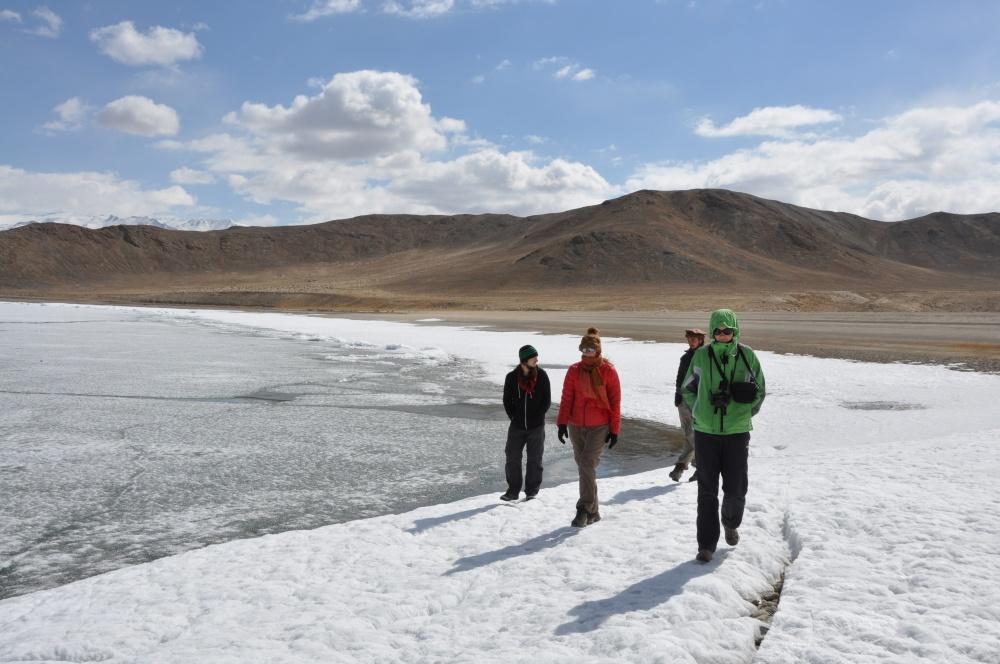 Vier Personen laufen entlang des gefrorenen Sees