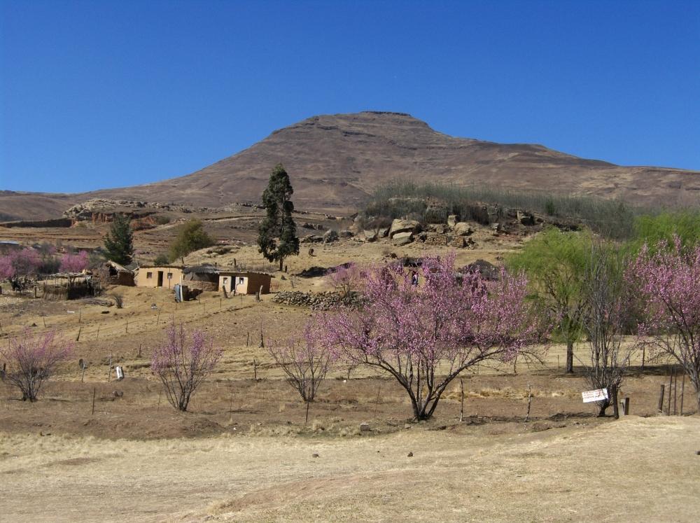Bergdorf in Lesotho