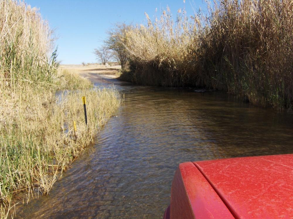 Chicolino fährt durchs Wasser