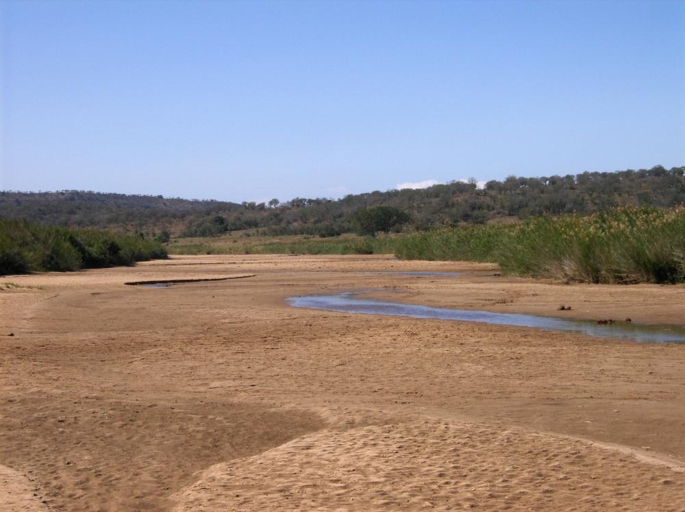 Rinnsal im sandigen Flussbett