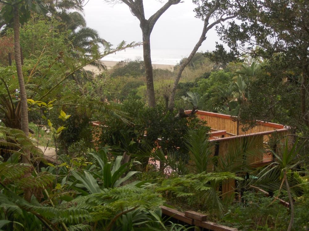 Terrasse im Dschungel