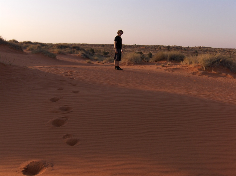 Tobi spaziert durch Sand