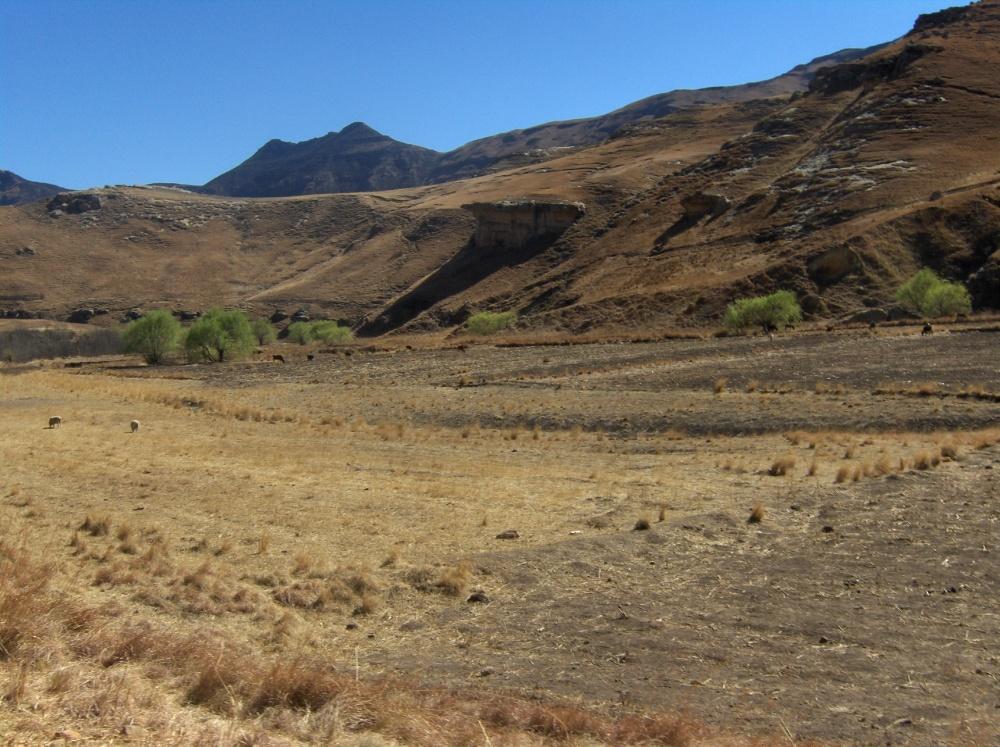 Trockenes Feld in Bergregion