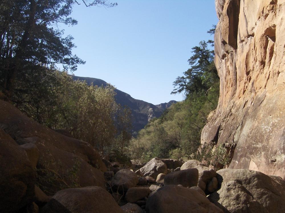 Trockenes Flussbett Drakensberge