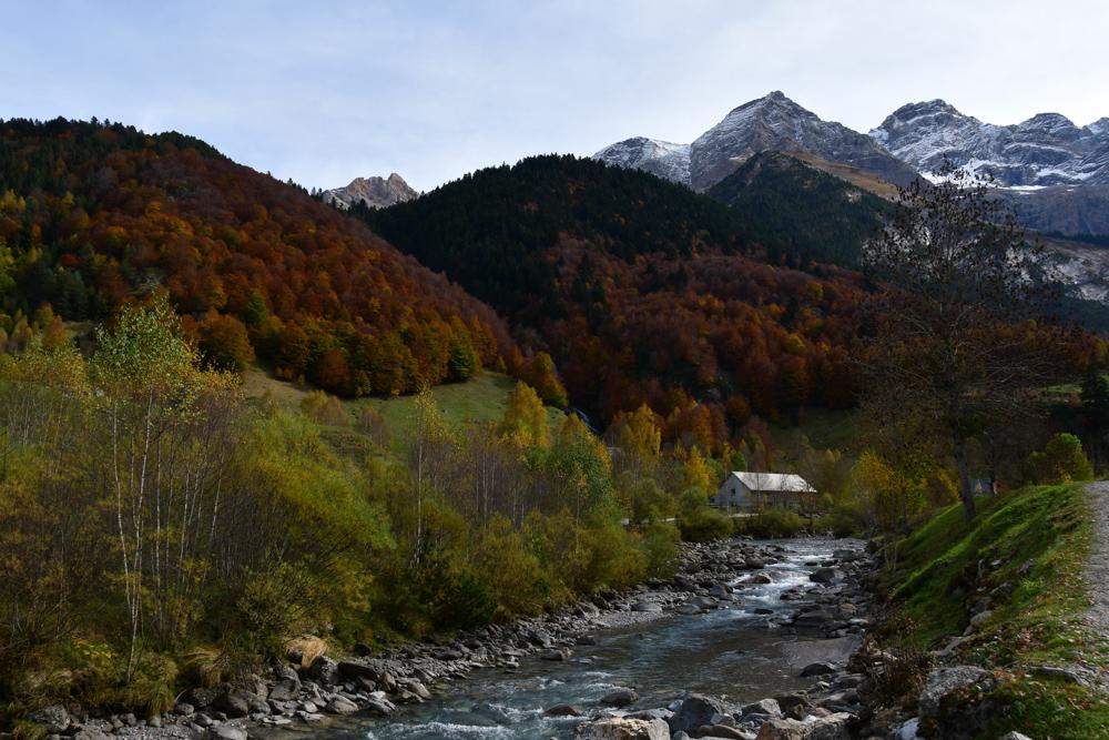 Fluss farbiger Wald Schneeberge