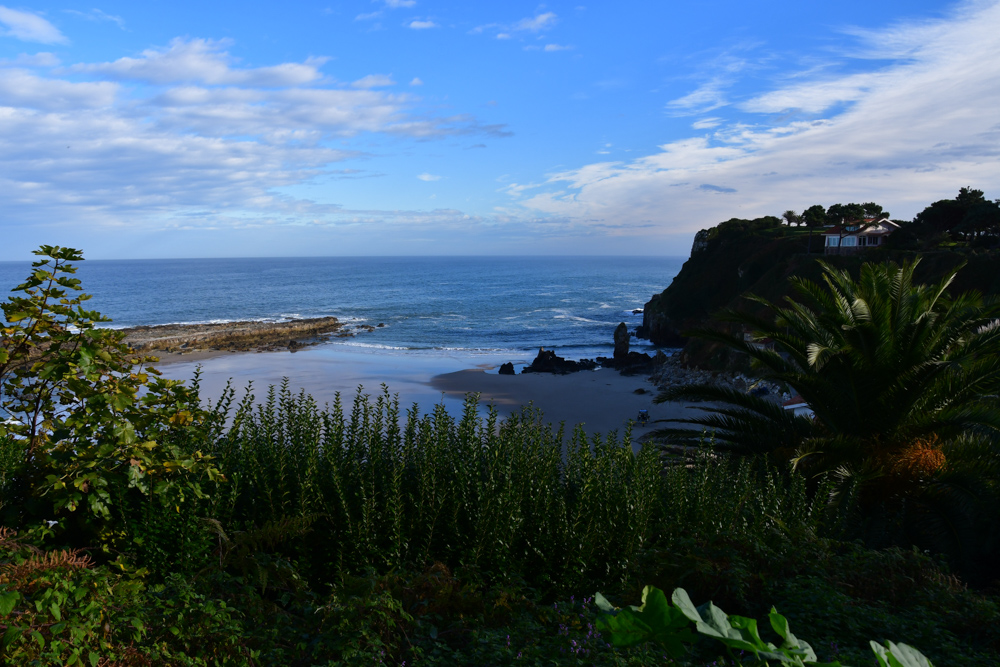 Uebernachtungsplatz Atlantik Strand Pflanzen
