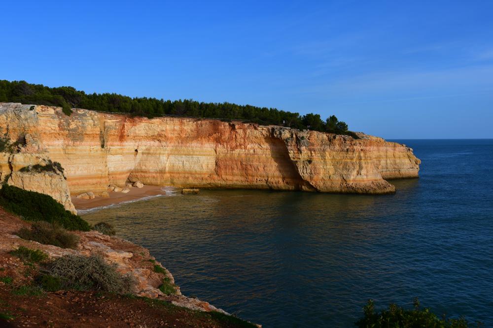 Ockerfarbige Klippe mit Baeumen Meer