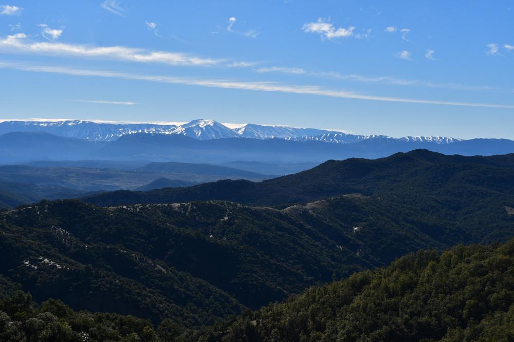 Bergkette Schnee Grashügel