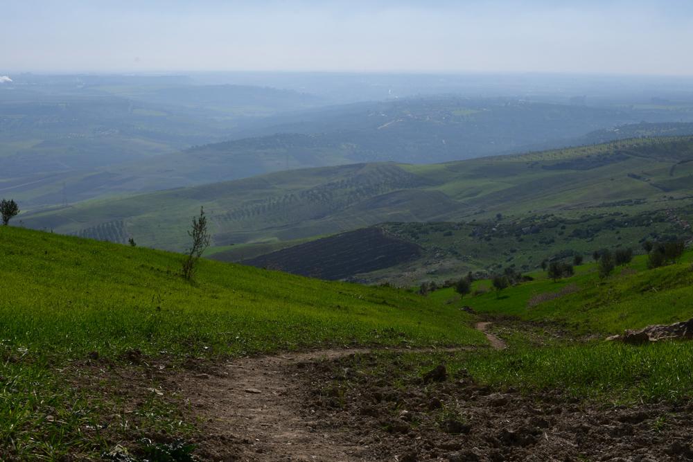 Grüne Hügel mit Wiese