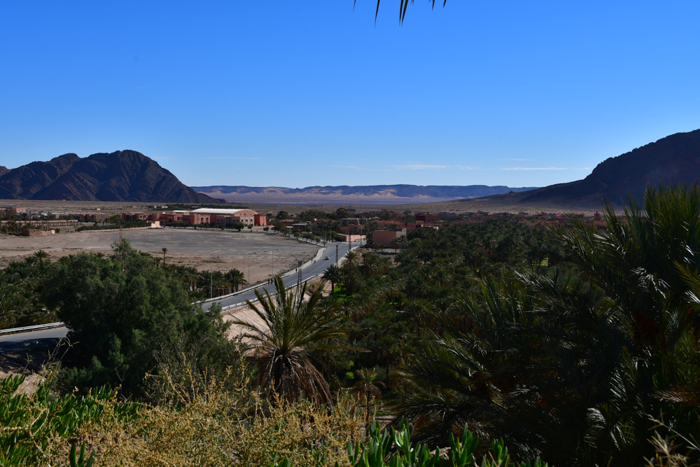 Palmenoase Figuig Blick auf Algerien