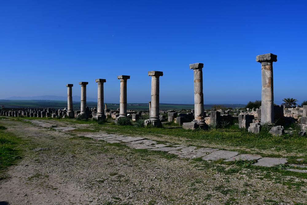 Volubilis Säulen