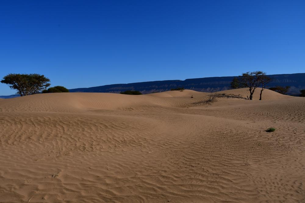 Kleine Sandduenen Oued Draa Uebernachtungsplatz
