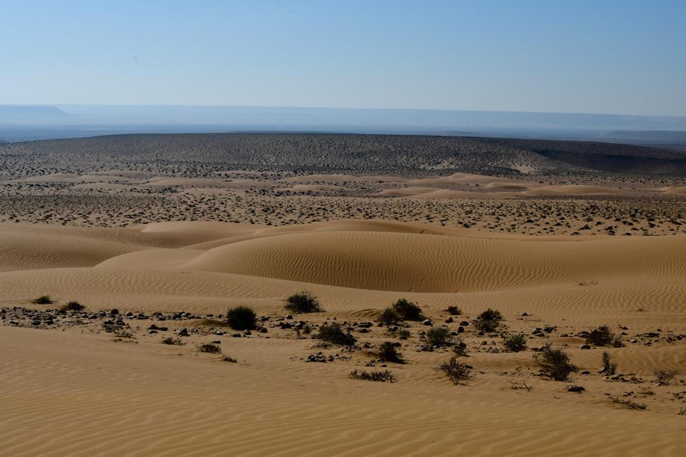 Aussicht ueber kleine Sandduenen Dunst in Ferne