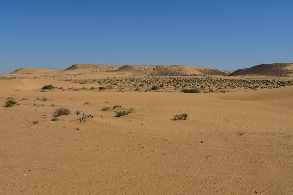 Kleine Sandduenen in Ferne