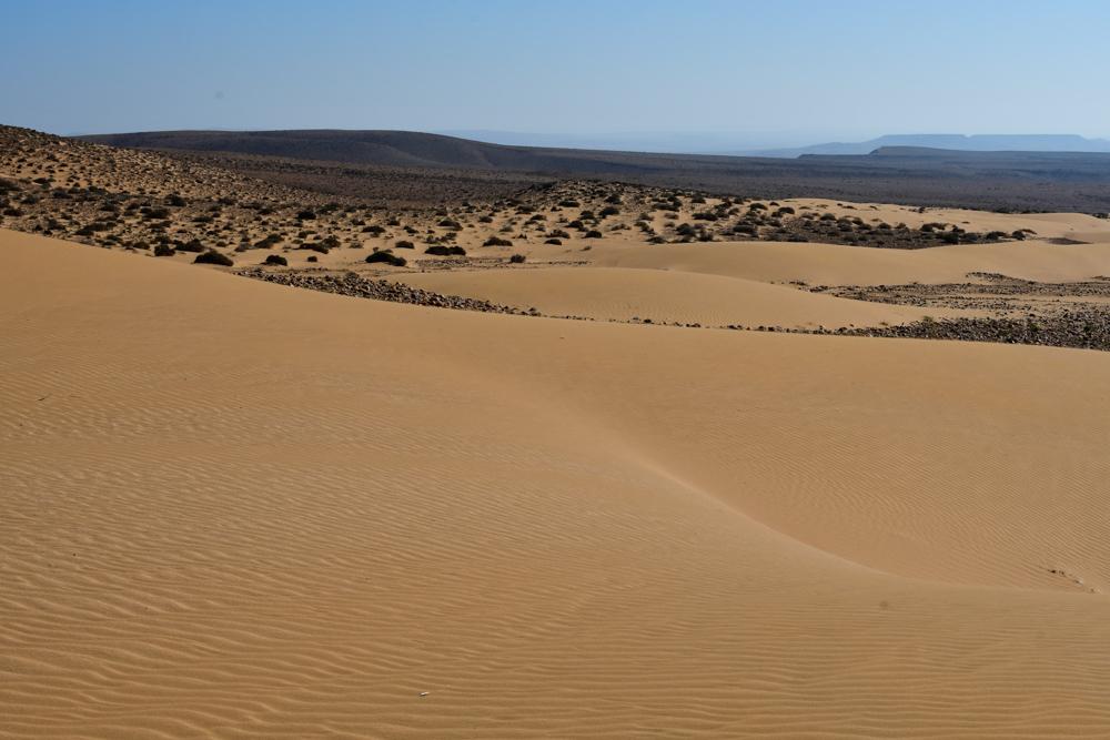 Sandduenen bewachsene Huegel im Hintergrund