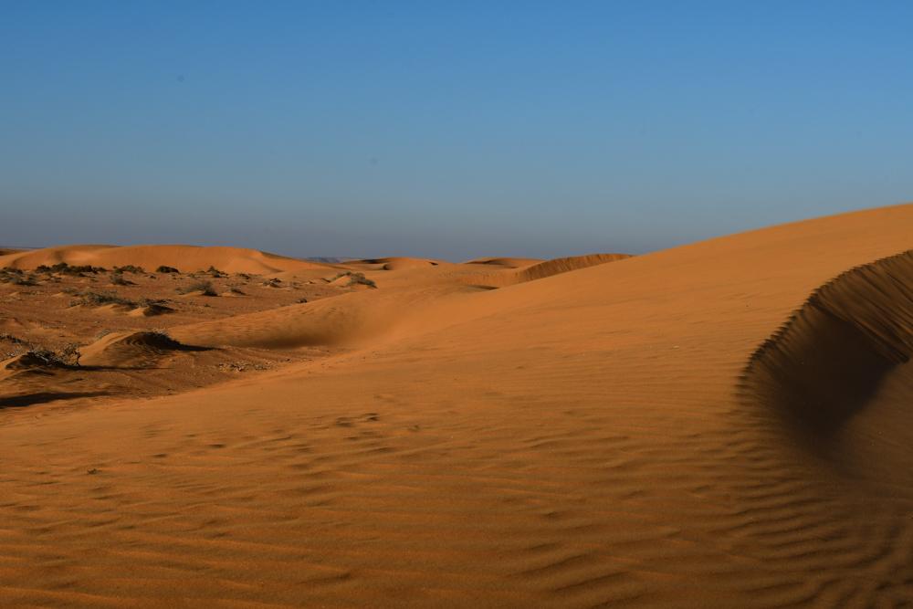 Sandduenen leuchten in Abendsonne
