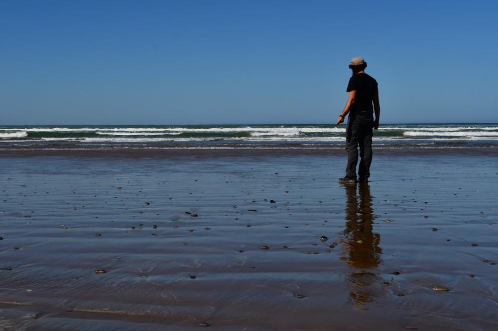 Tobi auf nassem Strand Plange BlancheTobi auf nassem Strand Plange Blanche
