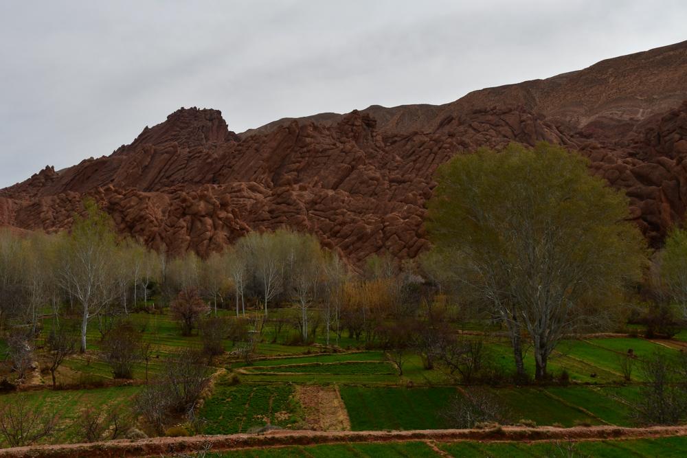 Kurioser Berg gruene Felder Baeume