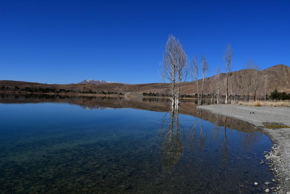 Lac de Tislit Baeume im Wasser