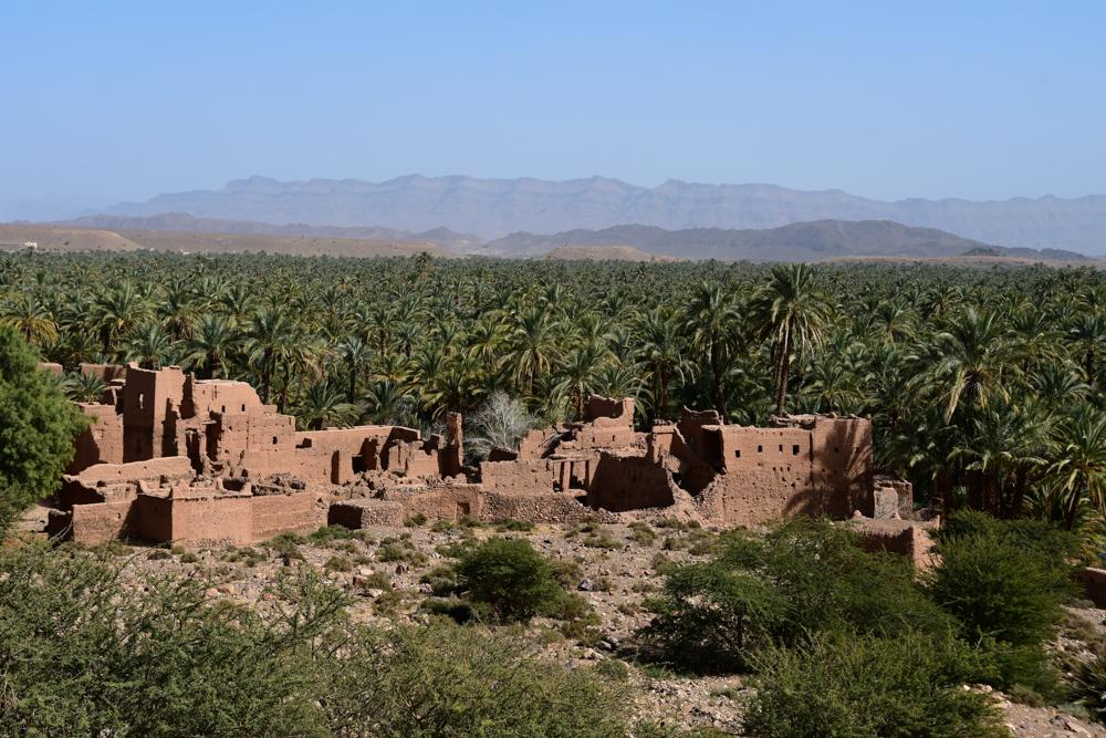 Lehmruine Palmenoase Oued Draa