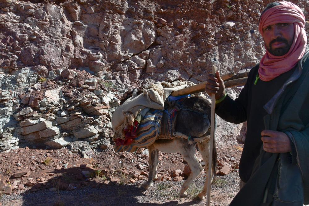 Mann bepackter Esel unterwegs