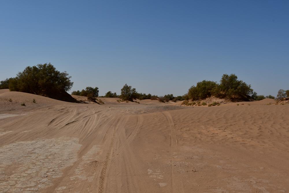 Sandpiste zum Erg Chegaga