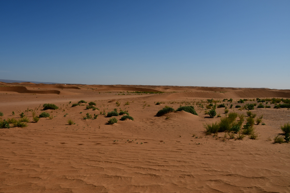 Sandpiste zwischen kleinen Duenen