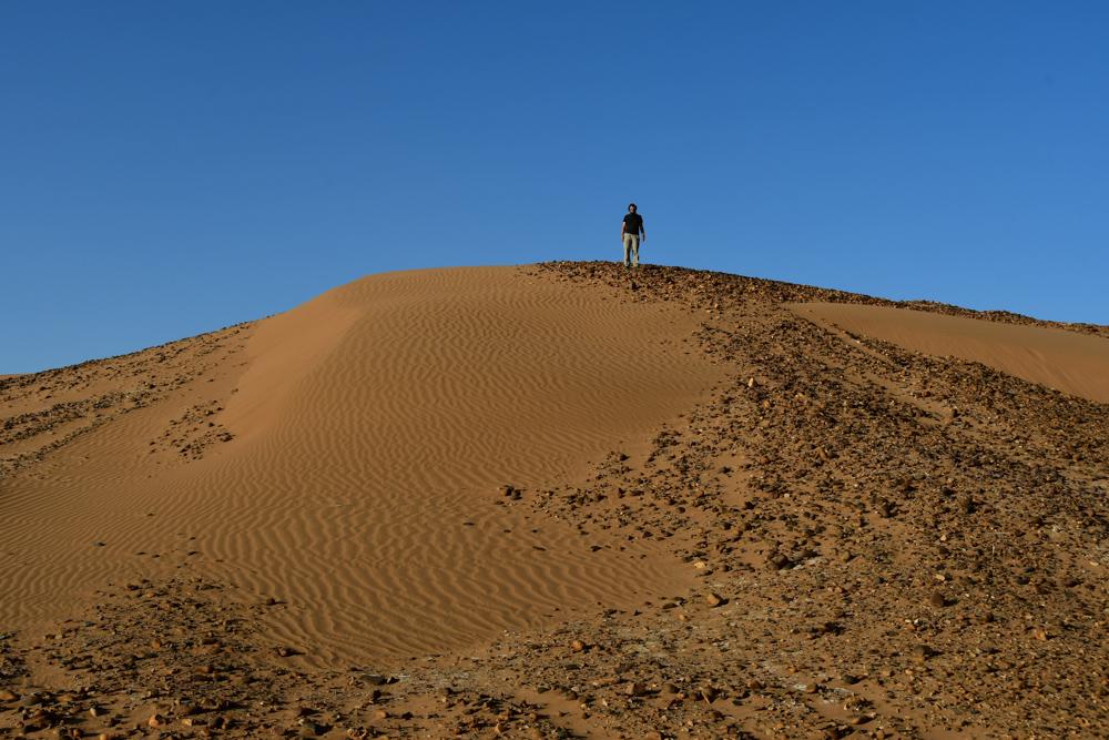 Tobi auf Sandduene mit Steinen