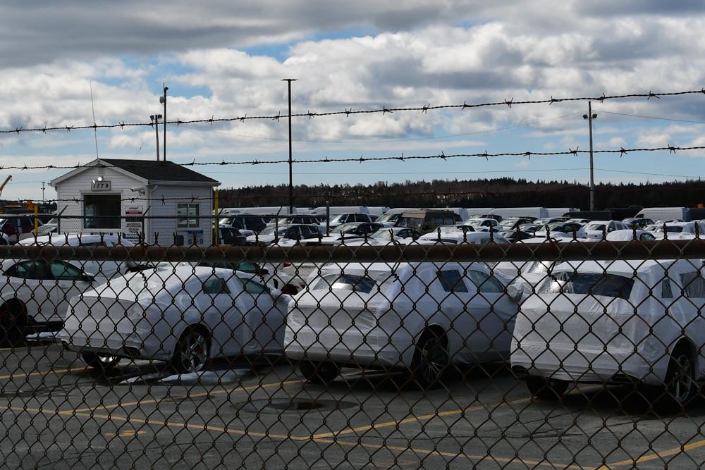 Manny unter Neuwägen am Hafen Halifax