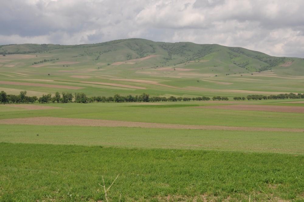 Ackerfelder vor Hügel