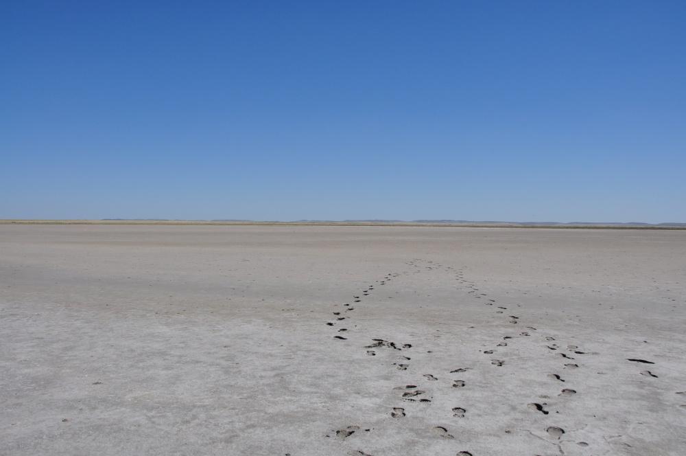 Fussspuren im trockenen Seebecken