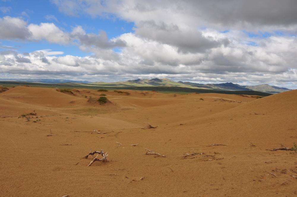 In den Dünen Mongol Els