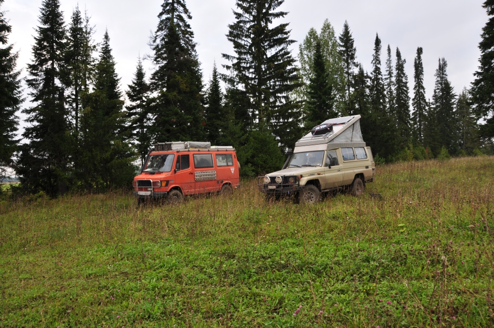 Mashin und Manny am Waldrand
