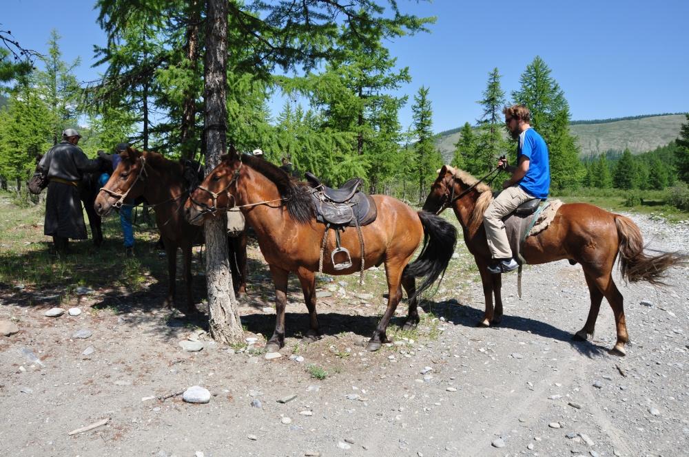 Tobi auf Pferd