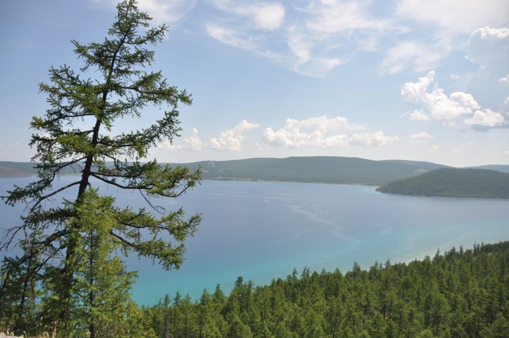 Wald, Khövsgöl Nuur