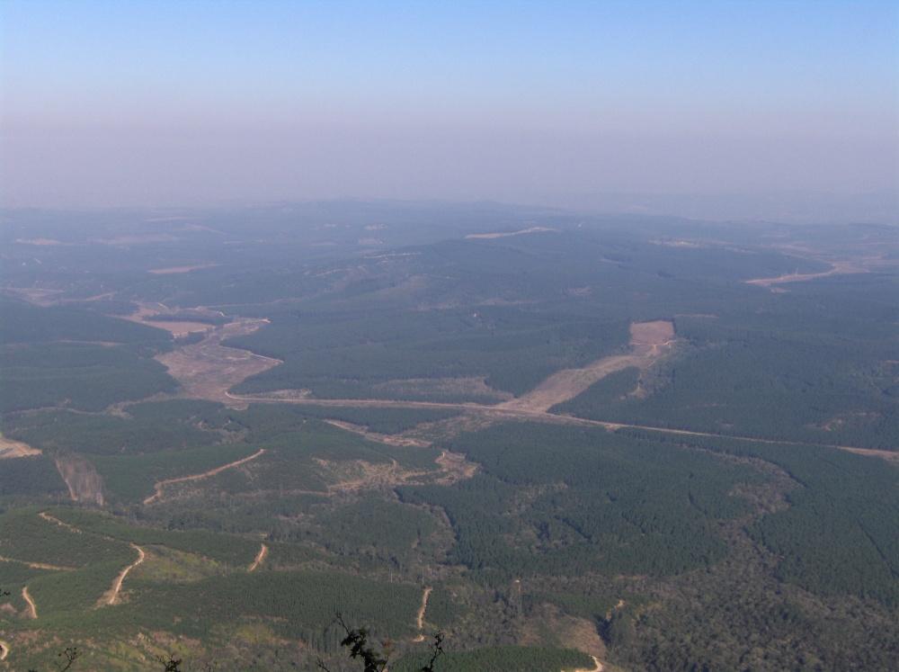 Ausblick über die Provinz Mpumalanga