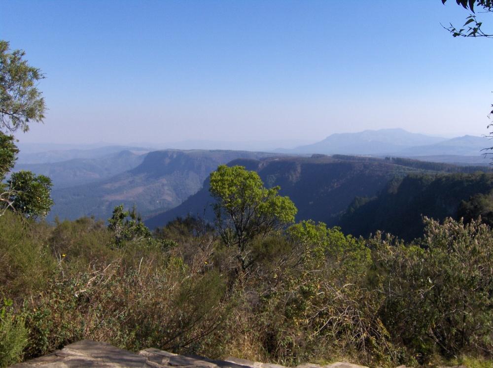 Grünes Panorama in Mpumalanga