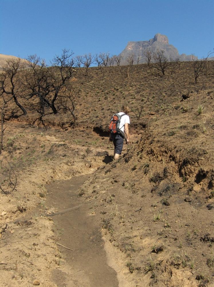 Tobi wandern in Drakensberge