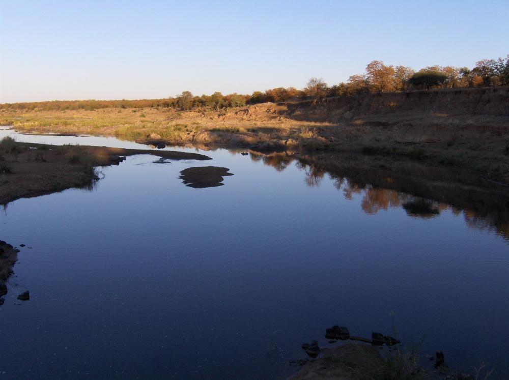 Wasserstelle im Krüger National Park