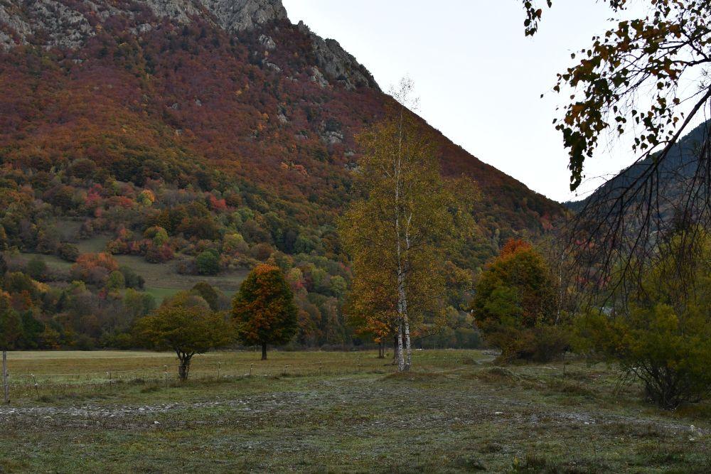 Herbstbäume, Übernachtungsplatz, französischer Pass