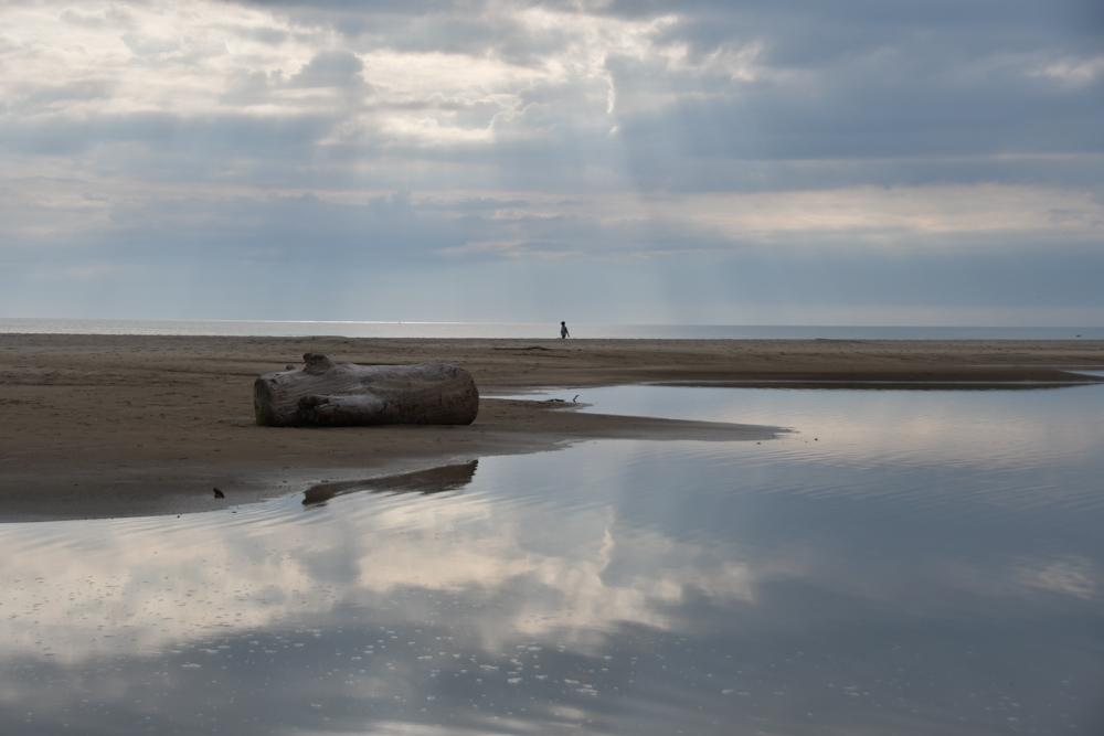 Baumstrunk Junge am Meer Sonne scheint durch Wolkenloch