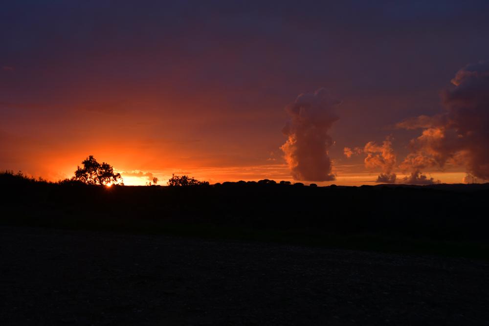 Sonnenuntergang Wolkenbilder Baum