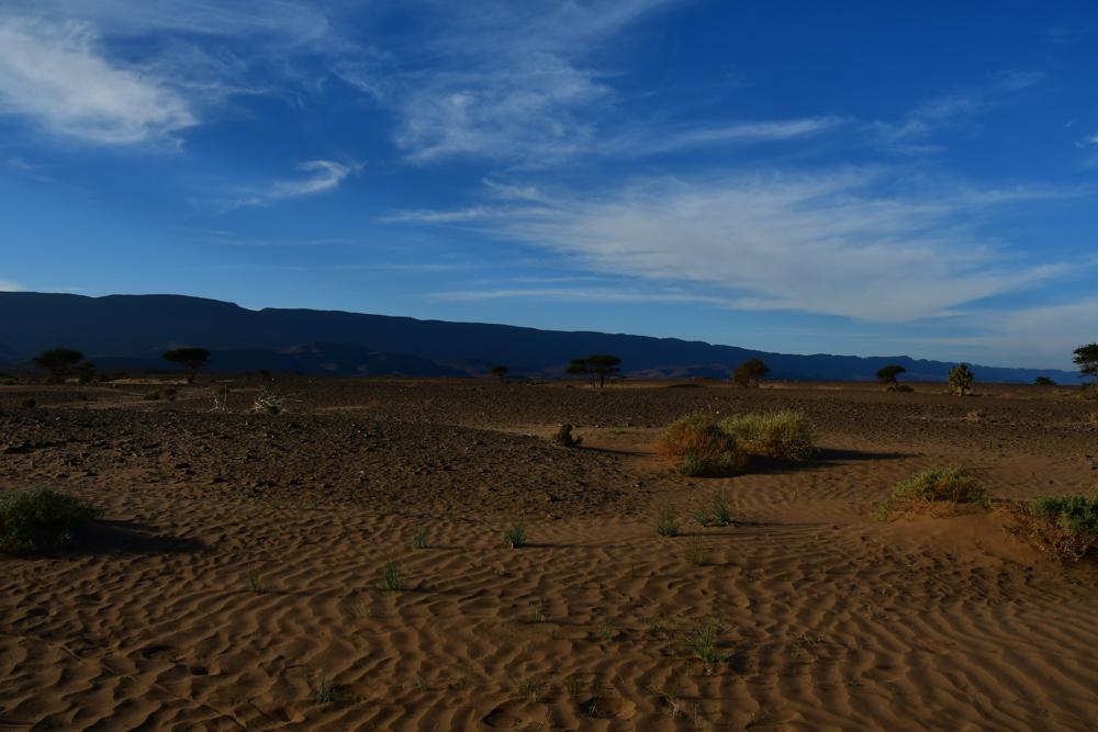 Kleine Sandduenen Akazien Oued Draa blauer Himmel