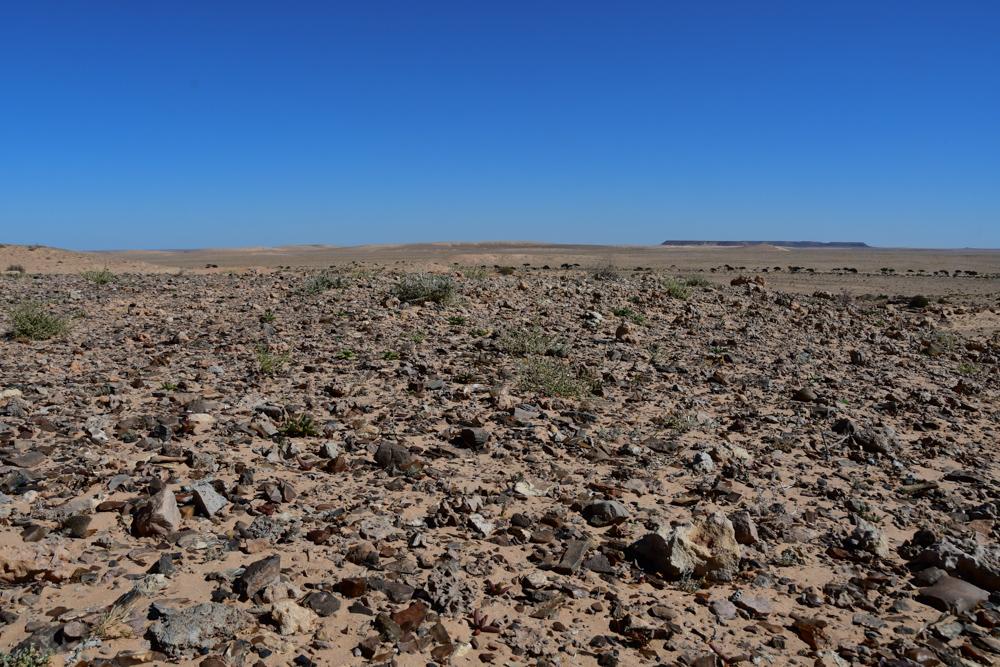 Steine Sand Wueste zwischen Esmara Laayoune
