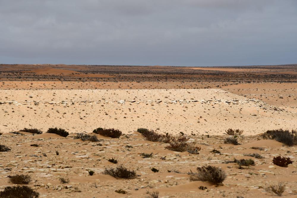 Wueste Westsahara oede